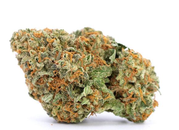 Indoor Top Shelf Orange Sherbert 28% THC