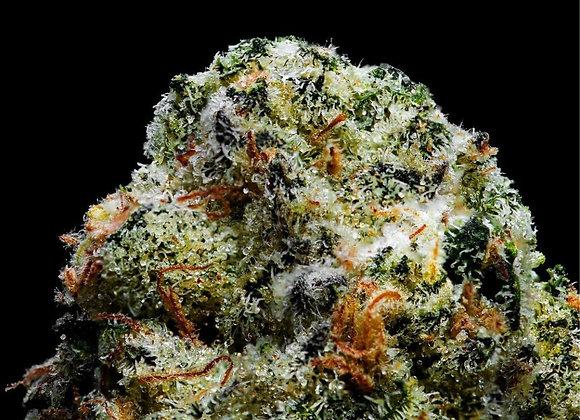 Indoor Top Shelf CHOC CHERRY COOKIES 30.25% THC Indica