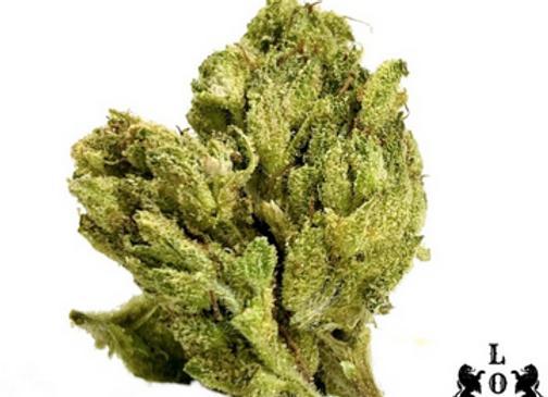 Royal Bud - Chemdawg 19% THC Sativa