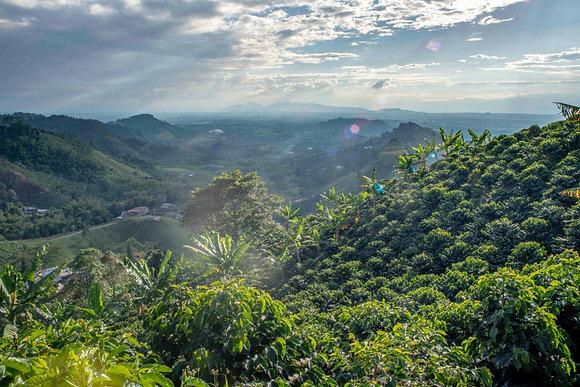Colombia CDNT Casabianka Dream Island Treat