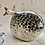 Thumbnail: Medium size fat birdie