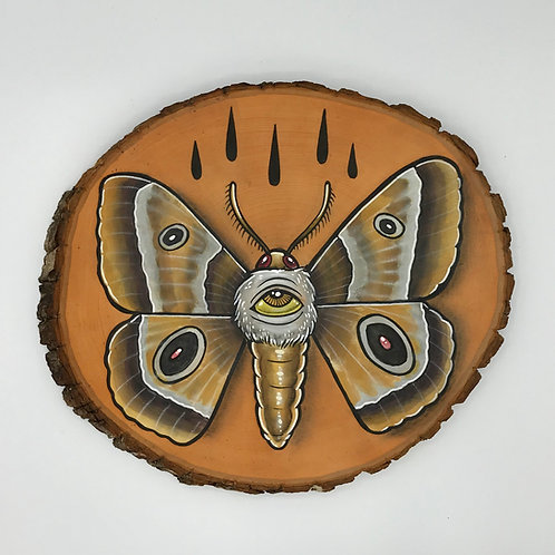 """Moth"" by Mike Herrera"
