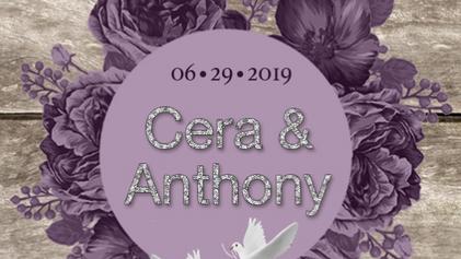 Cera & Anthony's Wedding