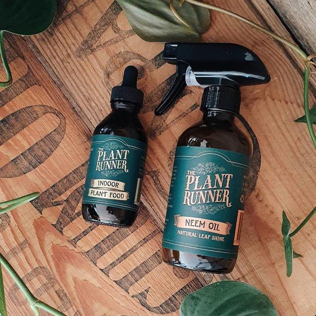 PlantRunner.png