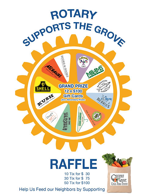 RotaryRaffleWebAddLink.jpg