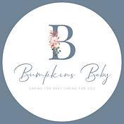 Full bumpkins consultancy logo (4).png