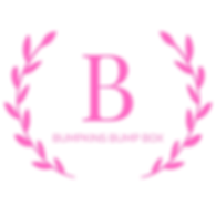 BUMPKINS BUMP BOX (1).png