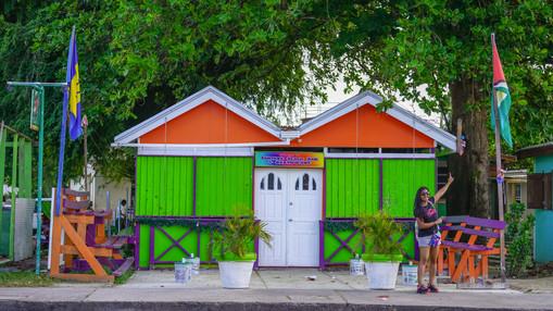 Guyanese Flag Spotted