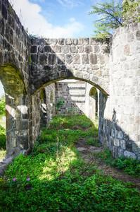 Abandoned Plantation Grounds