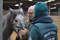 Equus_Monty_Roberts-12.jpeg