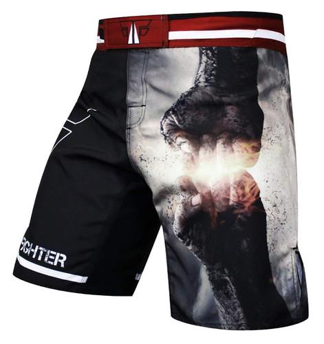 BYB Custom MMA Shorts