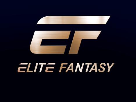 New Logo Design I created for Elite Fantasy