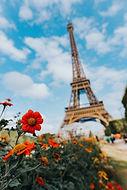 Build the Eiffel Tower