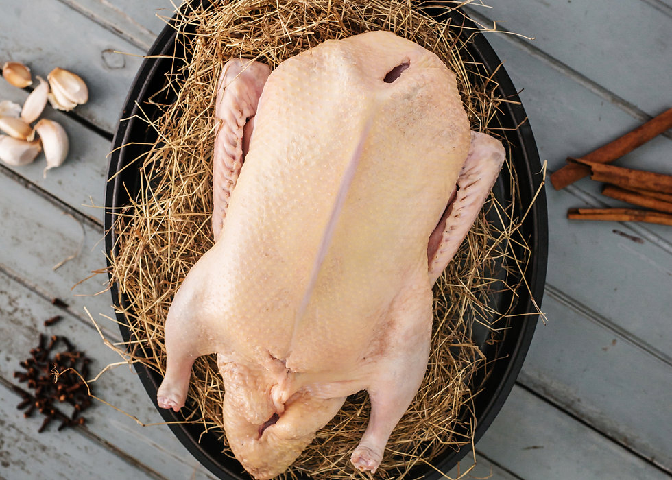 Free-range duck no antibiotics no hormones