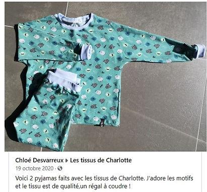 avis les tissus de charlotte - 10.jpg