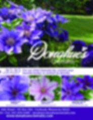 DC-GreenProfit-AD-THSQ-061119.jpg