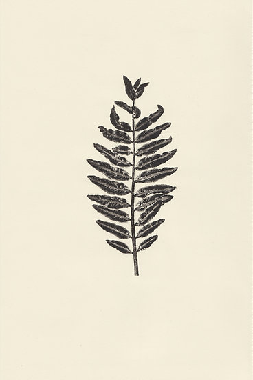 Flora (V)