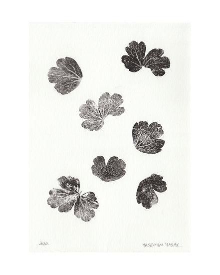 Botanical Collage #3