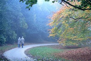 An elderly couple walk down a road.
