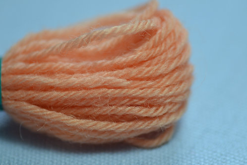 861 Coral