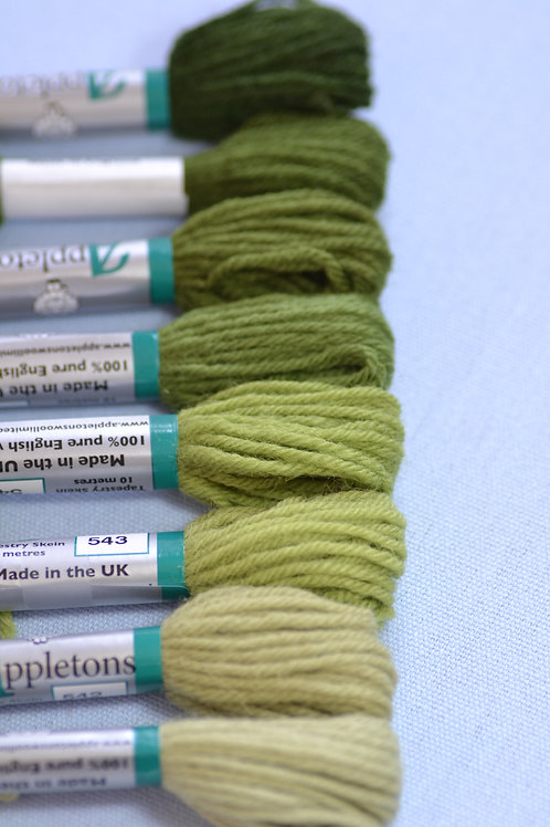 Complete range: 540 Early English Green