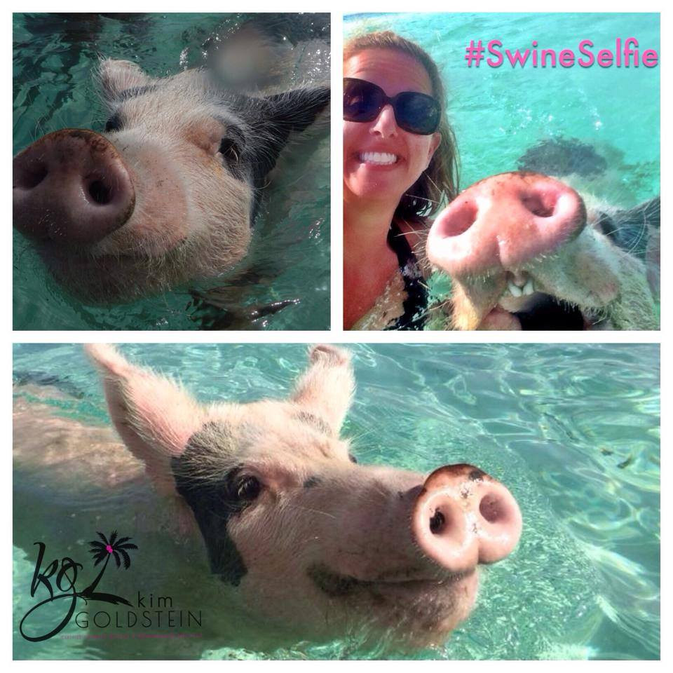 Island Routes Exuma Cay Ocean Safari-Swimming with the Pigs