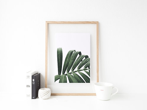 Palm Power Print