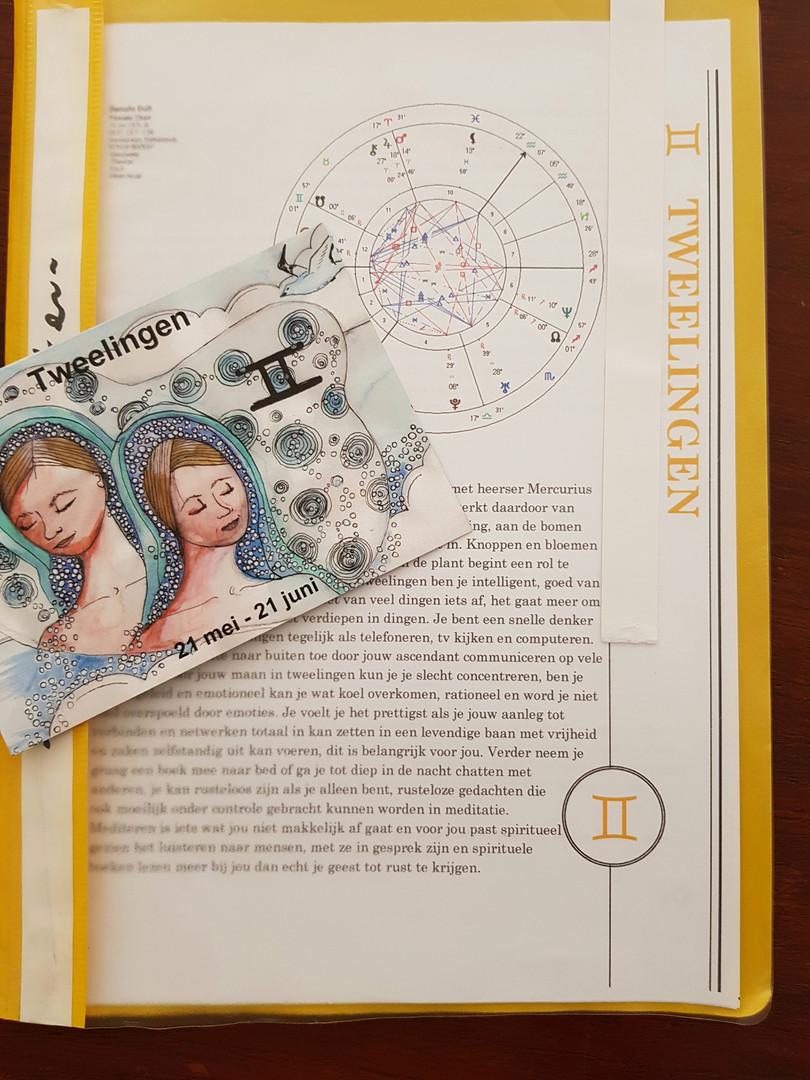 Horoscoop van een tweelingen