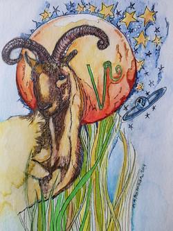 Dierenriemkaart Steenbok