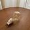 Thumbnail: Lâmpada decorativa incandescente