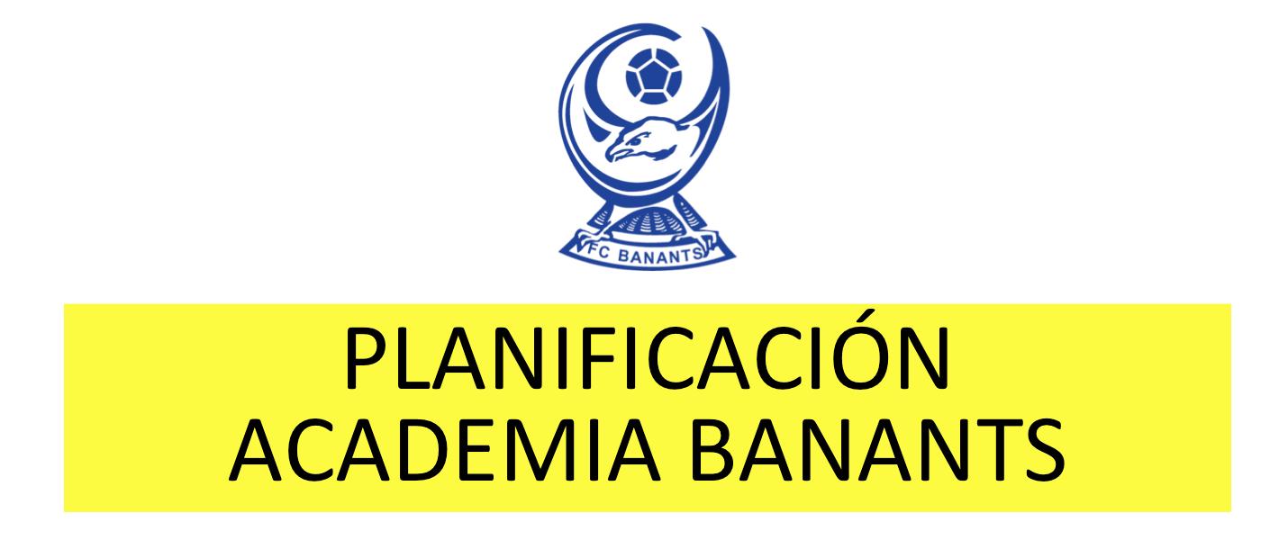 Planificación Academia Banants 2016