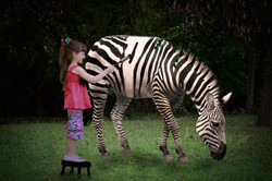 Zebra Painting Work in Progress