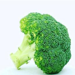 Le brocolis, aliment brûle-graisse