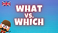 what vs which.png