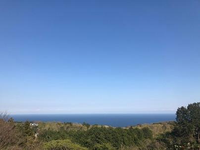 今日は晴れです。