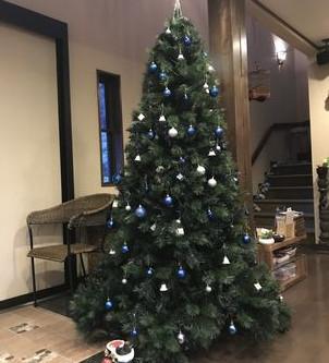 クリスマスツリーを飾った。