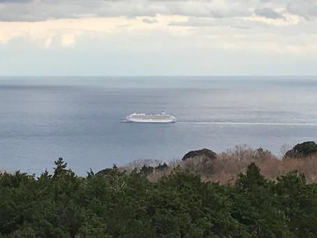 豪華客船に乗りたい。