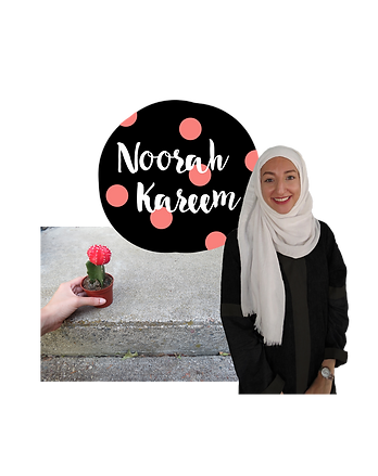 About Noorah kareem coaching