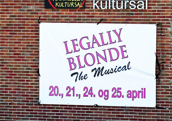Legally Blond banner1.jpg