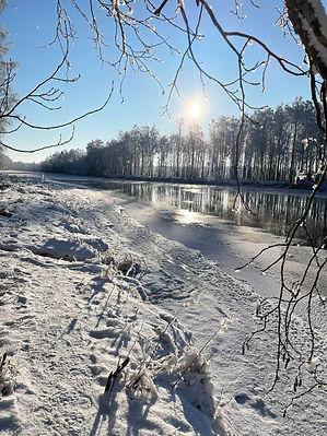 Natur_vinter.jpg