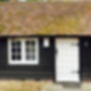cottage fuchsia.jpg