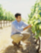 Inspecting the vines
