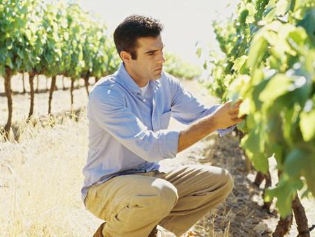 Al Via i nuovi corsi per imprenditore agricolo - ex capo azienda