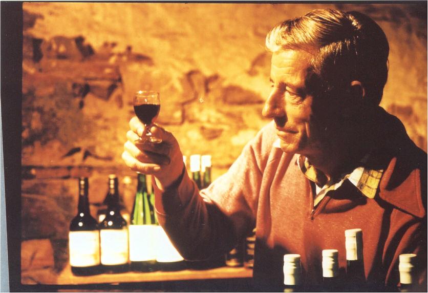 corinja wines