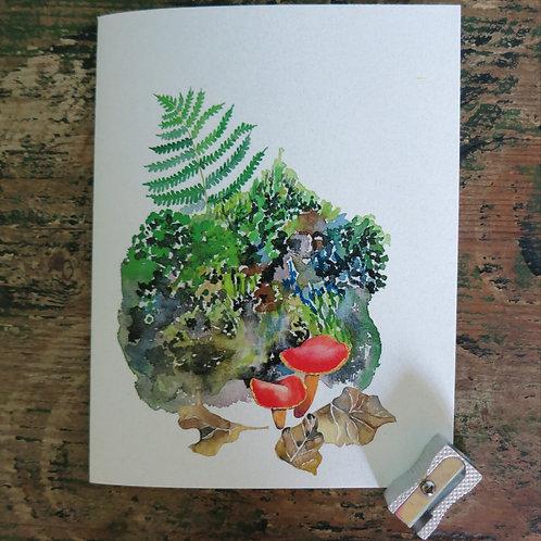 orange mushrooms and fern