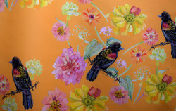 red winged blackbird & zinnias