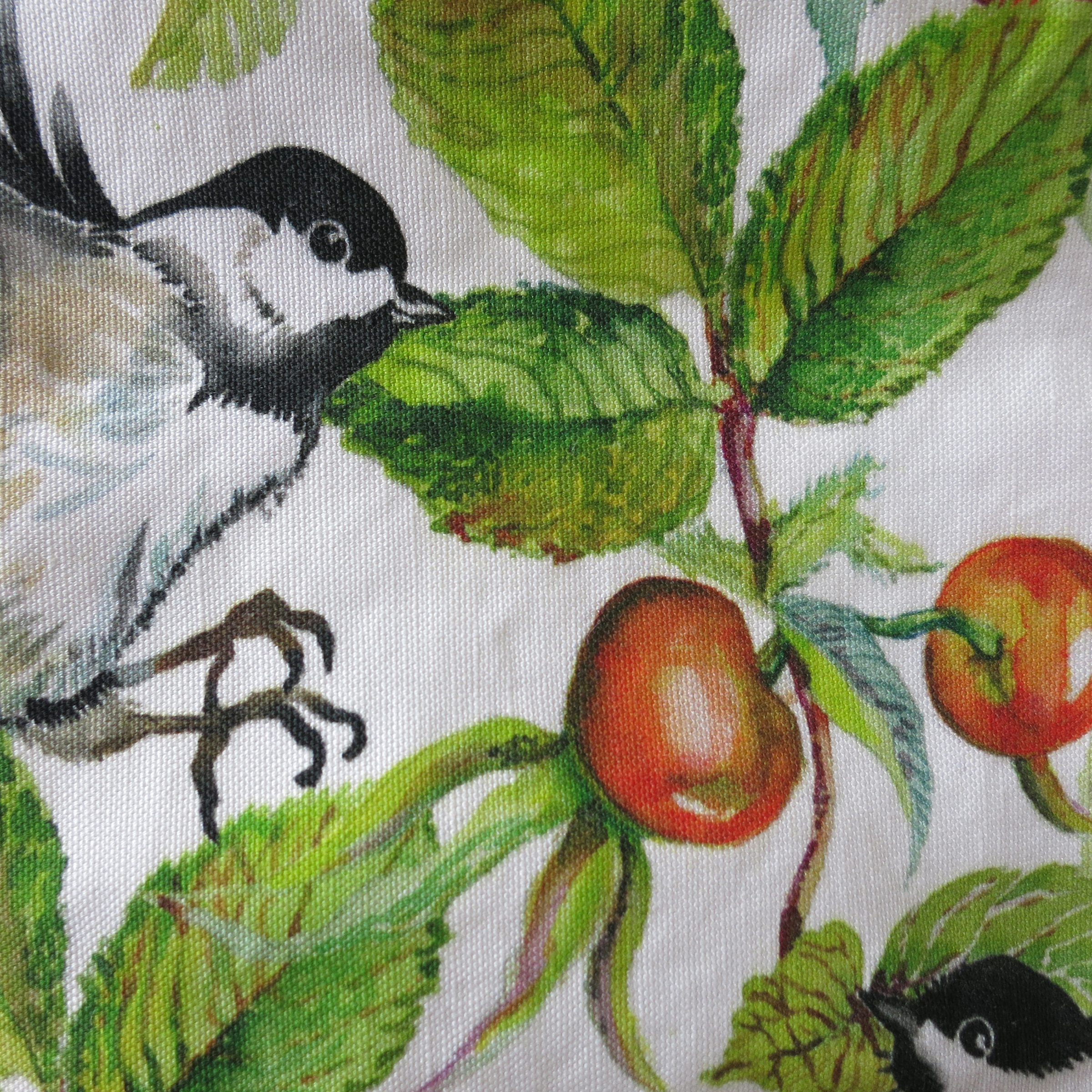 chickadees & rosehips