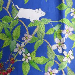 white mice and raspberries
