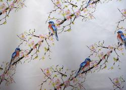 bluebirds & quince