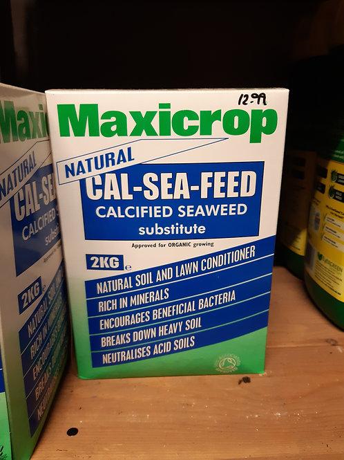 Maxicrop seaweed plant food 2kg